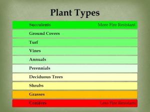 Plant types and fire resistance