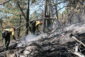 Mopping up is hard dirty work, but essential to fully put out a wildfire.
