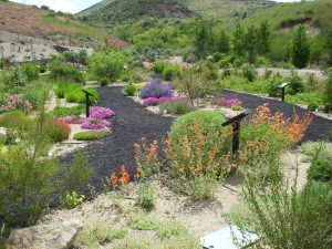 A demonstration garden is a cultivation of an ordered collection(s) of plants designed to teach and learn.