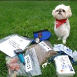 Prepare emergency kits for your animals.