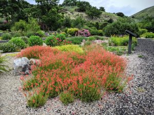Firewise Demonstration Garden, Homesite, Boise, Idaho