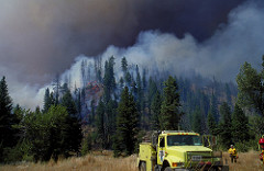 Anyone starting a wildfire may be held responsible for that fire until it is out.