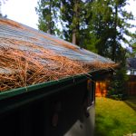 Keep gutters and roofs free of debris.